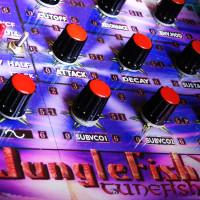 DTS007_Junglefish